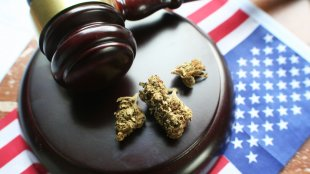 A gavel and cannabis nugs on a raised stand sitting on top of an American flag
