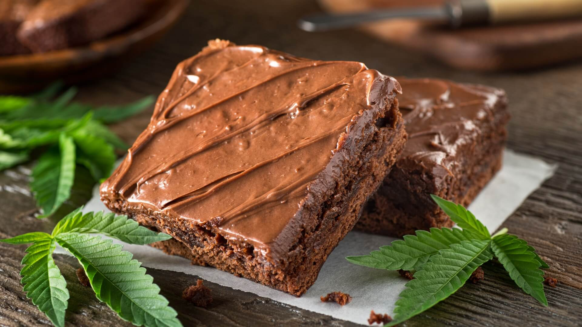 A weed brownie on a plate surrounded by weed leaves
