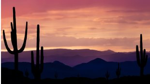 Southwest Arizona desert during a sunset