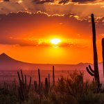 A sunset in a desert in Arizona