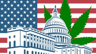 An illustration of the white house with an american flag and a cannabis leaf behind it