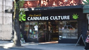 The front of cannabis culture, a cannabis dispensary