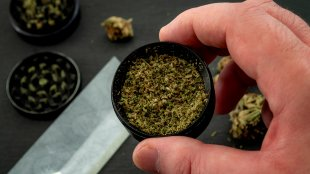 Hand holding a grinder with mid grade weed