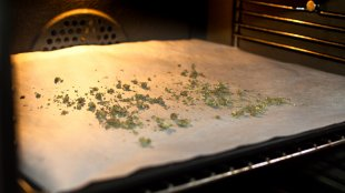 Weed being decarbed in an Oven