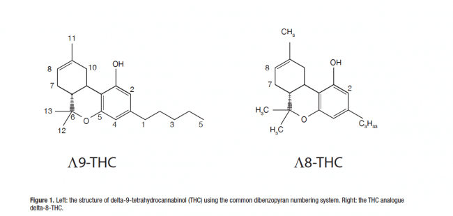comparison of delta-9 and delta-8 thc's chemical structure