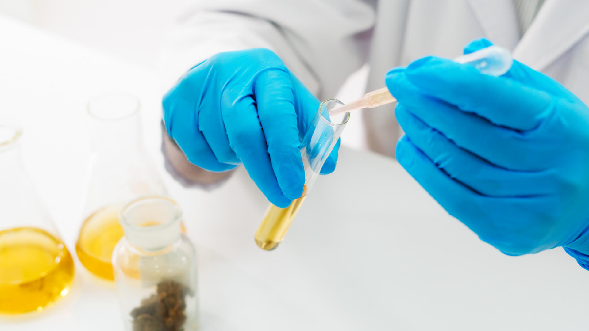 Closeup of a scientist working with cannabis in a lab