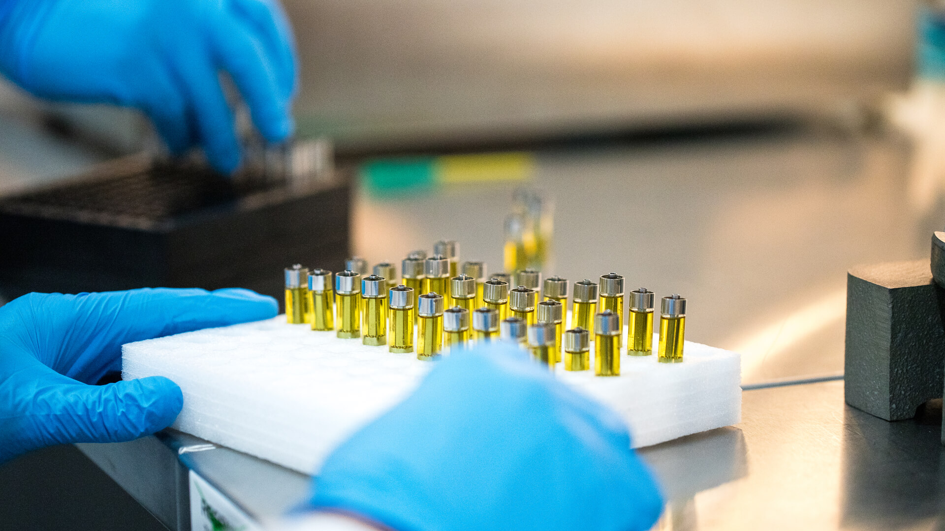 A lab technician preparing a tray of marijuana cartridges