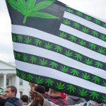 A protester holding up an American weed flag in front of The White House