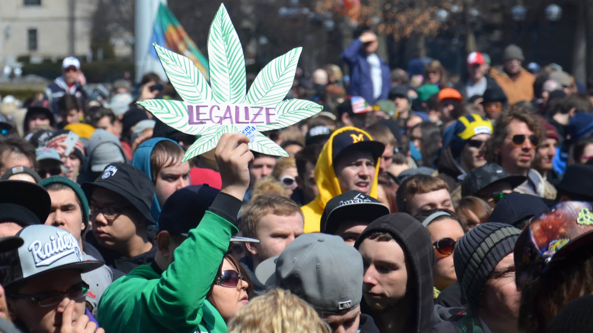 activists holding a rally for legalization in Ann Arbor, Michigan