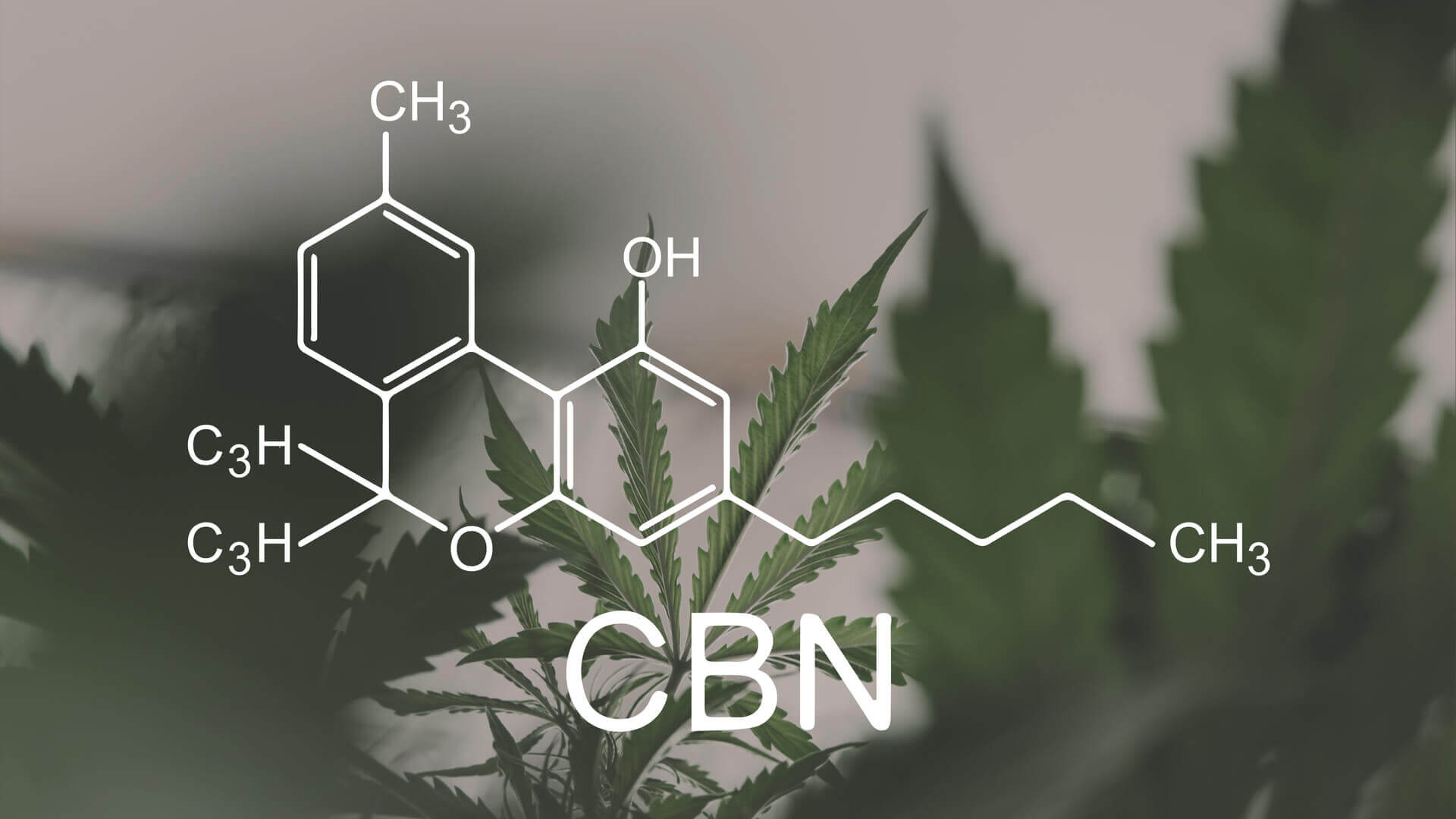 What is CBN? Does it Help with Sleep?